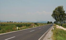 image of biodiversity  - The Ljubljansko Barje also known as the Ljubljana Marshes - JPG
