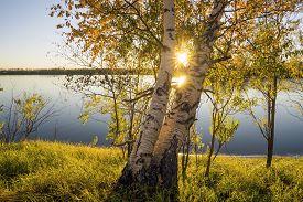 image of siberia  - Beautiful sunset on the river Ob in Western Siberia - JPG
