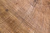 Tree Ring Background poster