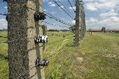picture of auschwitz  - Entrance or so - JPG
