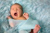 Happy Smiling Newborn Baby In Wrap, Sleeping Happily In Cozy Fur poster