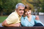 stock photo of married couple  - senior couple in love at the park - JPG