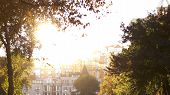 Bright Sunshine Above Town Buildings. Green Trees And Sunshine In The Park. poster