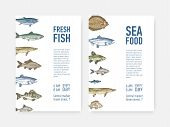 Set Of Flyer Or Poster Templates With Fish And Place For Text. Cards With Aquatic Creatures, Marine  poster