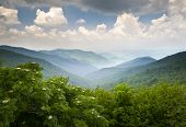 picture of asheville  - Blue Ridge Parkway Scenic Mountains Overlook Summer Landscape Asheville NC at Craggy Gardens in WNC - JPG