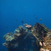 Underwater shoot of USAT Liberty wreck. Tulamben, Bali island, Indonesia