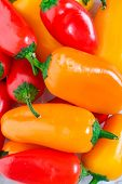 stock photo of chili peppers  - Orange red  - JPG
