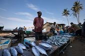 PADANG - AUGUST 25: Fishmonger waits for customers in a stall at an outdoor village market in Padang