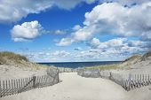 stock photo of dune grass  - Beautiful beach with big blue sky and clouds on Cape Cod - JPG