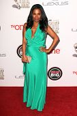 LOS ANGELES - FEB 22:  Nia Long at the 45th NAACP Image Awards Arrivals at Pasadena Civic Auditorium