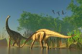 picture of behemoth  - Spinophorosaurus was one of the titanic dinosaurs that inhabited swamps of the Jurassic Era - JPG