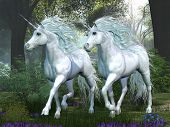 stock photo of elm  - Two white unicorns prance through an elm tree forest full of spring flowers - JPG