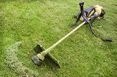 stock photo of trimmers  - Petrol trimmer is on the sloped lawn in the garden - JPG