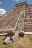 pic of snake-head  - Mayan temple stairs with sculpted snake head in the foreground - JPG