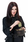 pic of witches cauldron  - Wicked young witch with a potion in a cauldron isolated on white background - JPG