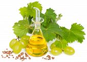 stock photo of grape  - grapes seeds and grape seed oil isolated on white