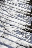 foto of ironworker  - Shadows of wrought ironwork on fresh snow - JPG