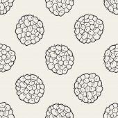 foto of custard  - Custard Apple Doodle - JPG