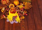 picture of christmas spices  - Spruce branch - JPG