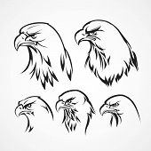 pic of eagles  - Eagle badge template - JPG