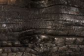 stock photo of charcoal  - The texture of charred wood - JPG