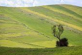 stock photo of shooting-range  - Photo shoot iin the park of Madonie in Sicily - JPG