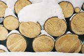 foto of firewood  - firewood in the winter forest. sawn wood.