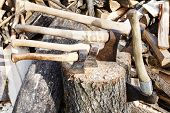 pic of cleaving  - many various axes in wooden block near pile of firewoods - JPG