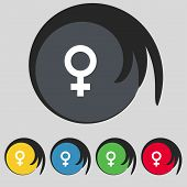 stock photo of gender  - Symbols gender Female Woman sex icon sign - JPG
