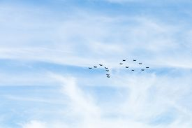 picture of fighter plane  - multi - JPG