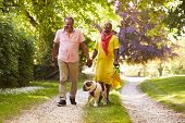 Senior Couple Walking With Pet Bulldog In Countryside poster