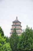 The Giant Wild Goose Pagoda Or Dayan Pagoda Located In Da Cien Temple Complex In Xian China On An Ov poster