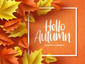 Hello Autumn Vector Background  Banner. Hello Autumn Greeting Text In White Frame With Fall Seasonal poster