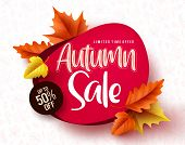 Autumn Sale Vector Banner. Autumn Sale And Discount Text In Red Space With Maple Leaves In White Tex poster