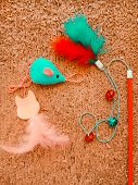 Cat Toys On Cat Scratcher Background. Pet Care Concept Top View poster