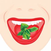 Mint Leaves In A Mouth. Oral Hygiene For Good And Fresh Breathe. Fighting Bad Breath Concept poster