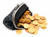 Coins in a purse