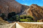 image of tozeur  - Spectacular Canyon Chebika and green palm trees  - JPG