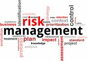 image of objectives  - A word cloud of risk management related items - JPG