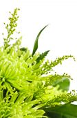picture of flower arrangement  - Close up of floral arrangement with green chrysanthemums