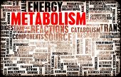 Metabolism as a Medical Health Exercise Concept poster