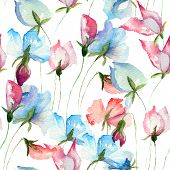 image of pea  - Seamless wallpaper with Sweet pea flowers watercolor illustration - JPG