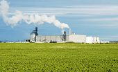 picture of ethanol  - ethanol production plant utilizing corn as a feed stock located in the middle of farm land in the dakotas - JPG