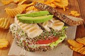 stock photo of alfalfa  - A grilled chicken sandwich with alfalfa sprouts and avocado on sprouted whole grain nut and seed bread