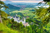 Neuschwanstein From Forest Above