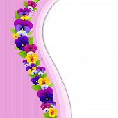 Background With Pansies, With Gradient Mesh, Vector Illustration