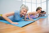 picture of cobra  - Fitness group doing cobra pose in row at the yoga class - JPG