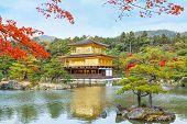 stock photo of shogun  - Kinkaku - JPG