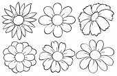picture of six-petaled  - Illustration of the flowers in doodle design on a white background - JPG