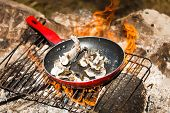 stock photo of brook trout  - Small Trouts Cooking in the Pan on a Campfire - JPG